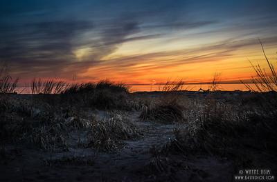 Night on the Beach   Photography by Wayne Heim