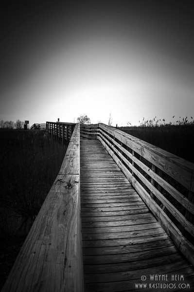 Best Walkway - Black & White Photography by  Wayne Hein