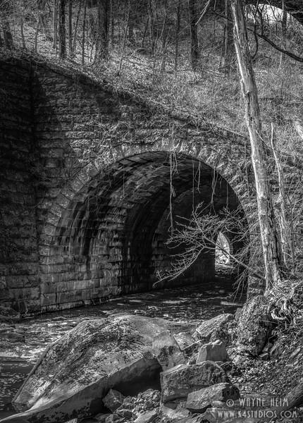 Way Through    Black & White Photography by Wayne Heim
