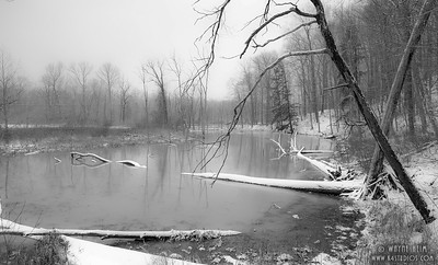Lonely River    Photography by Wayne Heim