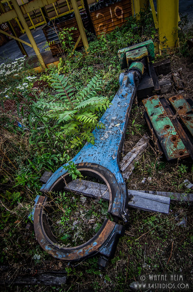 Discarded - Photography by Wayne Heim