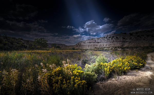 Light in the Field   Photography by Wayne Heim