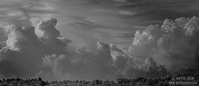 Storm A Comin'     Photography by Wayne Heim