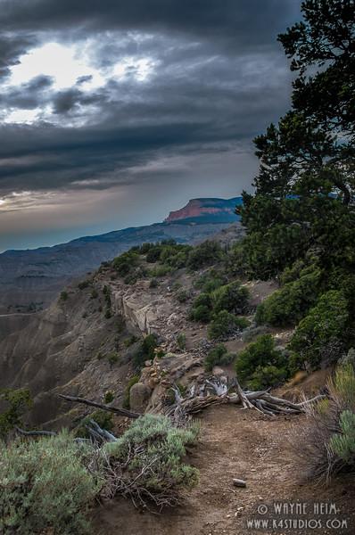 Blocked Trail    Photography by Wayne Heim