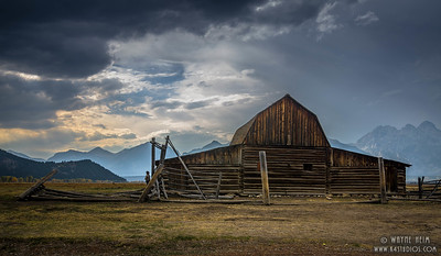 Still Standing   Photography by Wayne Heim