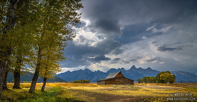 Alone on Prairie    Photography by Wayne Heim