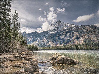 Tetons from the River    Photography by Wayne Heim