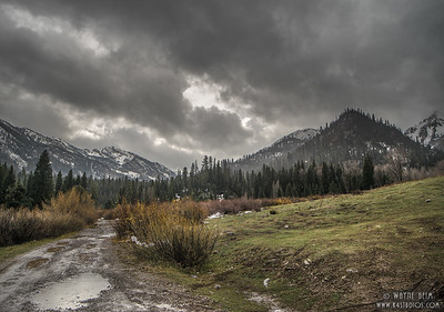 Mountain Back Road   Photography by Wayne Heim