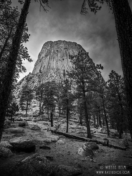 Devils Tower    Black and White Photography by Wayne Heim