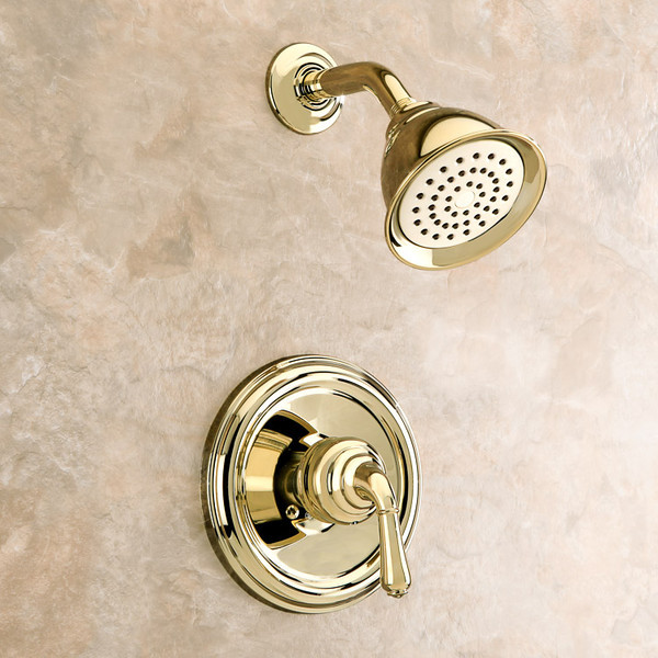 Polished Brass Shower- Edit Only- did not photograph