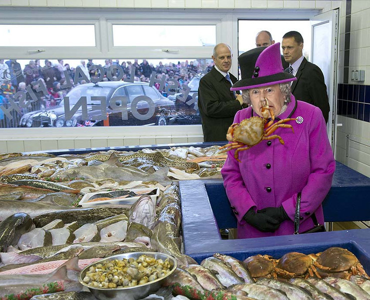 Britain's Queen Elizabeth II (R) looks at fish during a visit to West Quay Fisheries, Newhaven Fish Market, East Sussex, southern England on October 31, 2013. Her Majesty and the Duke of Edinburgh visted East Sussex on October 31, touring West Quay Fisheries and paying a visit to Harvey's Brewery, the oldest independent brewery in Sussex.  AFP PHOTO / POOL / ARTHUR EDWARDSARTHUR EDWARDS/AFP/Getty Images ** TCN OUT **