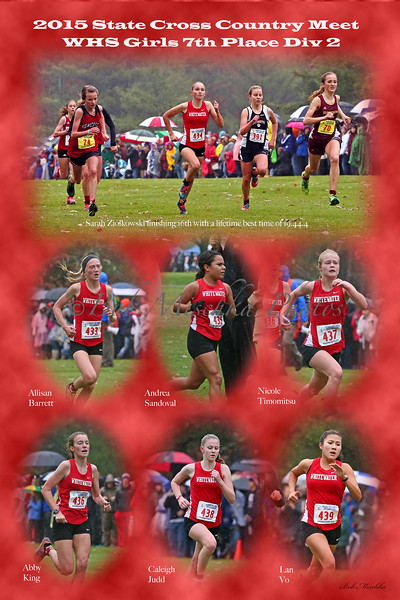 Cross Country Composite 8x12