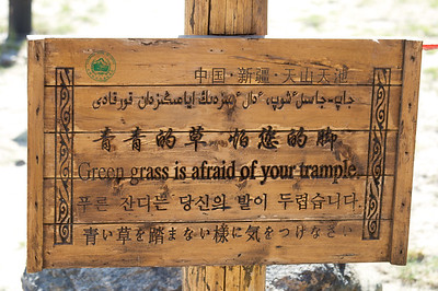 Green grass is afraid of your trample