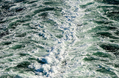 This photo is of the wake/water churn caused by the engines as we sailed out of Seattle, WA and towards Alaska. The first two days of the cruise were spent at what seemed like full speed.