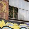 Graffiti Garden
