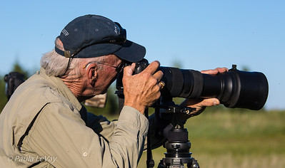 I'm intent on capturing the action! Shooting with a 150-600mm zoom on my Canon 7D Mark II.