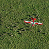 A Husky plane, donated by the German government, that will be used in anti-poaching patrolling and surveying the Serengeti. Here flown by Ramadhani Bakari Hamisi (TANAPA, Park Warden for the Control Room and soon to be Pilot). Serengeti NP, Tanzania. This is an aerial photo taken from another plane overflying the wildebeest and zebra migration. © Daniel Rosengren