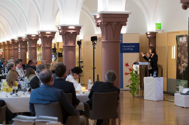 Priska Hinz (Staatsministerin HMUKLV) giving a speech at the Parlamentarischer Abend, Hessen - Land der Naturwälder, Hessischer Landtag. Wiesbaden, Hessen, Germany. © Daniel Rosengren