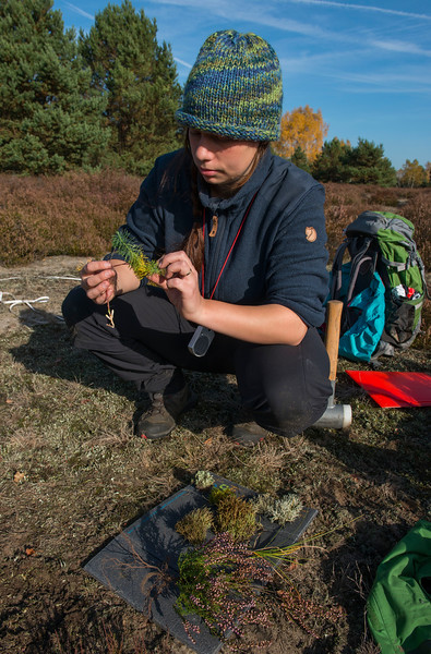 A student doing research in the area. Lieberose, Brandenburg, Germany. © Wildnis-in-Deutschland.de, Daniel Rosengren