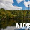 Bayrischer Wald + Logo weiß (Facebook, 472x394 Pixel)