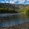 Bavarian forest National Parks - German Wilderness and Wildlife  (2015)