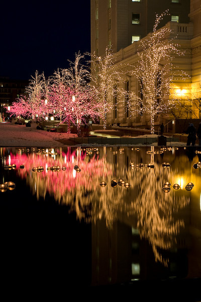 Christmas Lights Reflected