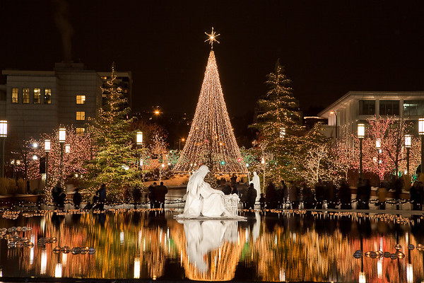 Reflection Pond Nativity