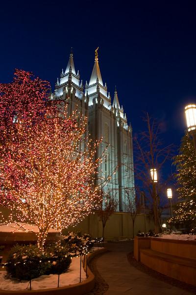 Salt Lake City Temple with Christmas Lights