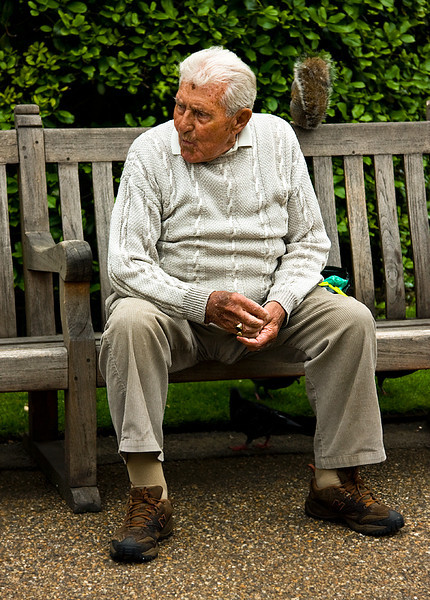 The Squirrel Guy in Kensington Gardens