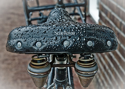 Photowalk 2009 'Wet Selle Color'