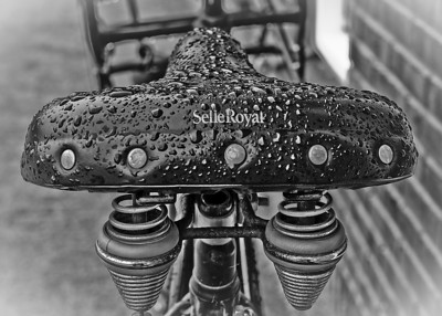Photowalk 2009 'Wet Selle Shining'