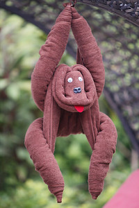 Phuket Mangosteen Resort & Ayurveda Spa Animal Towel Folding Classes - every Wednesday 3pm to 4pm on the pool deck. Join the classes free of charge, fun for the whole family. Charge applies if you want to keep your gorilla!