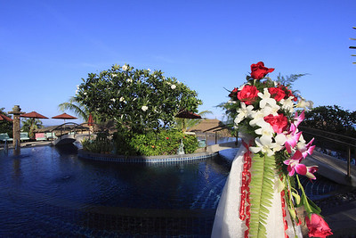 The Mangosteen Pool with decoration