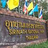 Sirinath National Park. Nai Yang Beach. Phuket. Thailand.