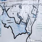 Phyllis Massey Stafford Conservation Area 37