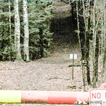 Phyllis Massey Stafford Conservation Area 6