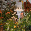 Museum of Natural History - orchid show