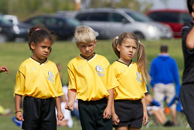 Golden Tigers U8 Spring 2014
