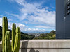 Cactus and San Francisco Bay View - Molecular Foundry Lab