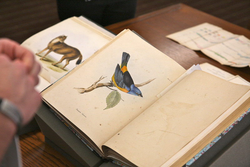 Hand-drawn pictures in each book!  This is a Darwin first edition - extremely rare.