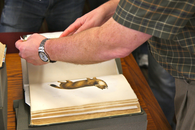 Darwin's first books on the animals found on his voyage.