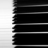 Black & White Black & Whites