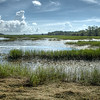 Kiawah Swamp<br /> <br /> Okay...  So I probably lost all credibility on this one but there you have it.  3 exposures combined.