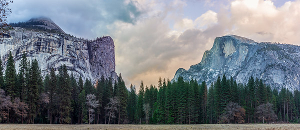 yosemite and sequoia--17