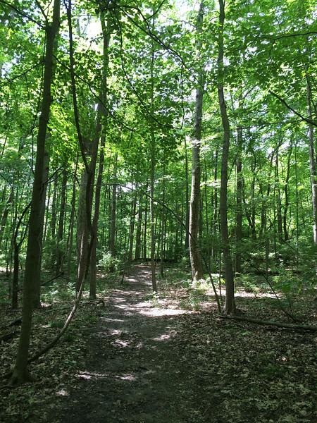 Western Woods Trail