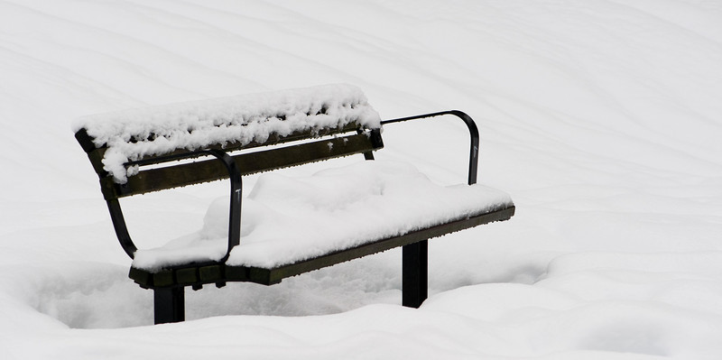 Jan 1st - Park bench in the snow.