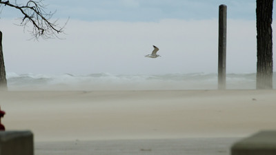 10-30-2012 (8:15am) 40 mph winds coming off Lake Michigan at the Indiana Dunes State Park - Thanks to Frankenstorm Sandy!