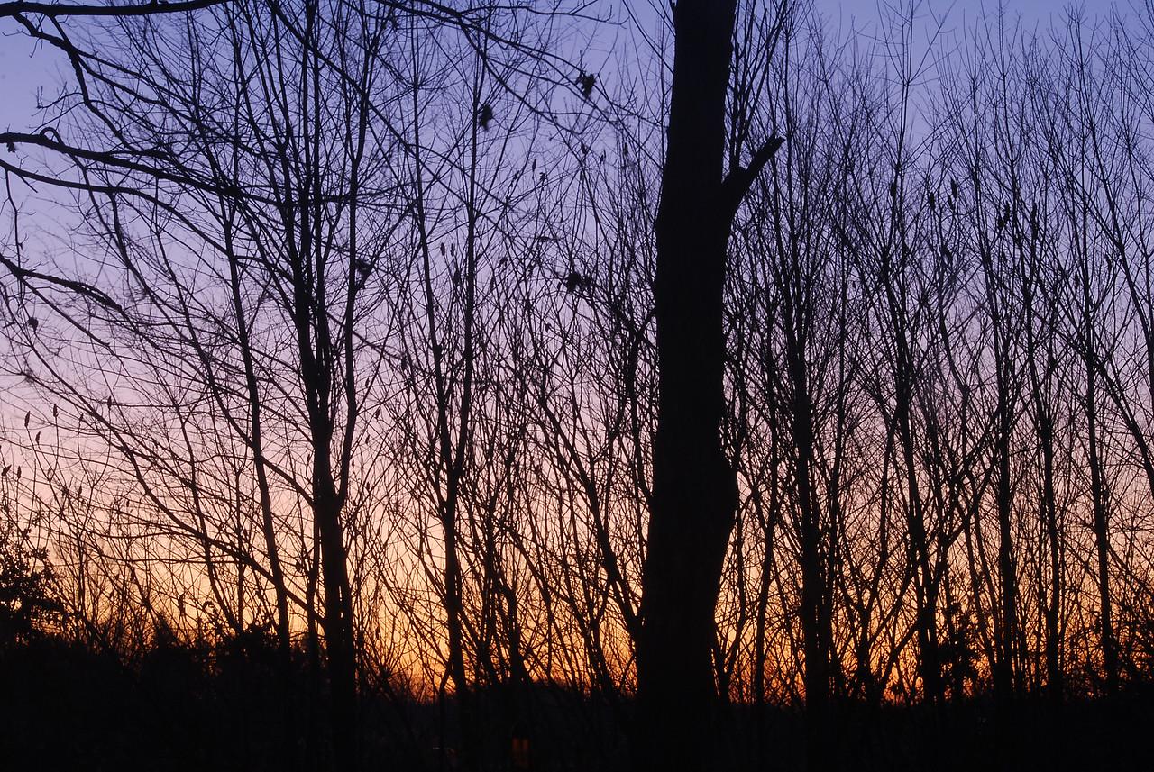 12-01-2009 - First Light