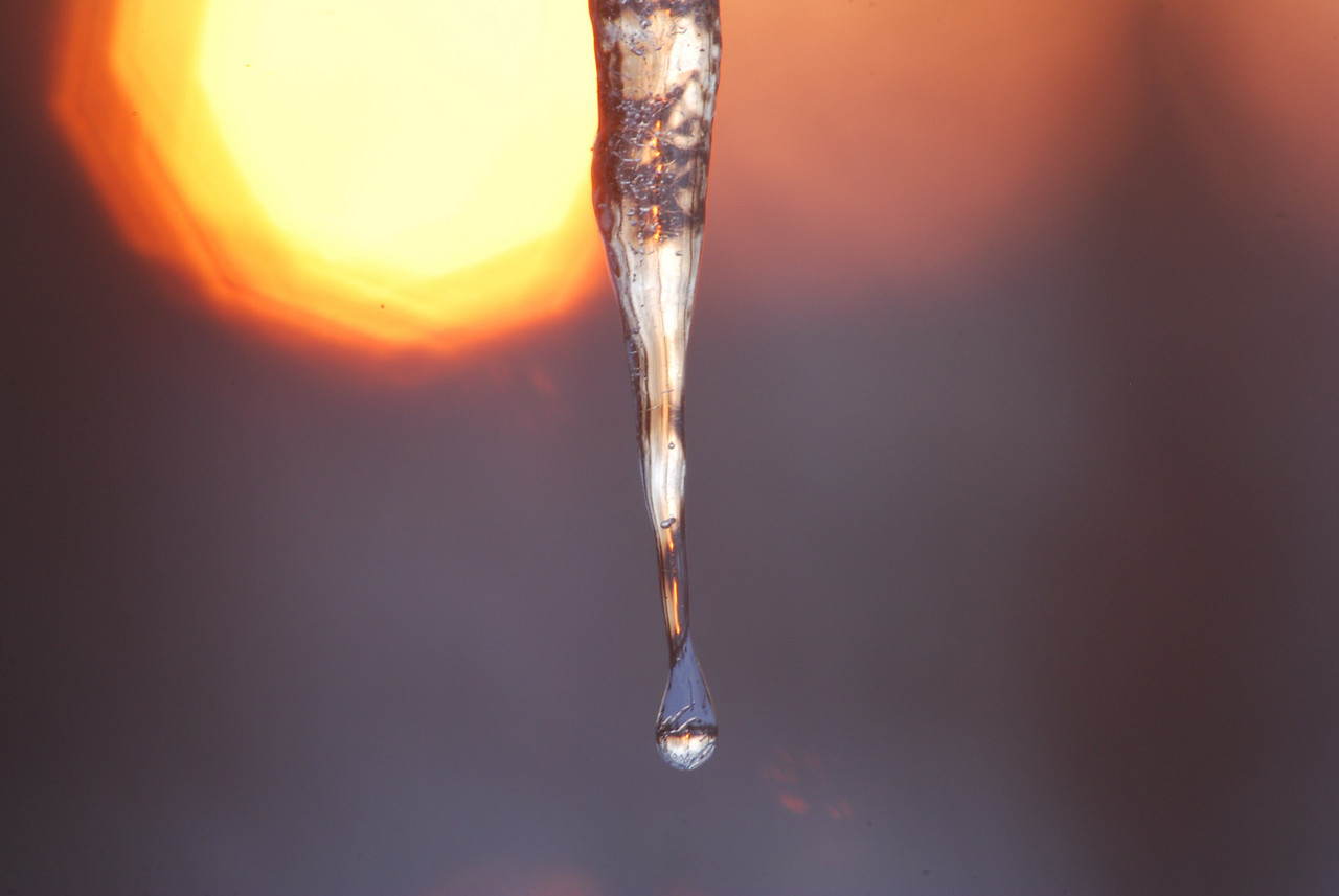 02-19-2010 - Icicle@Sunrise 