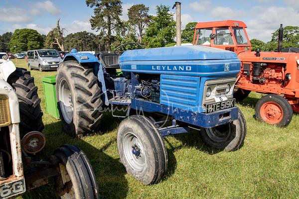 HTE 519K Leyland 384